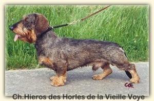 Hieros-des-Horles-de-la-Vieille-Voye